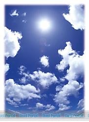 ブロッコリーハイブリッドスリーブ 「あの夏の青空」 リバイバル